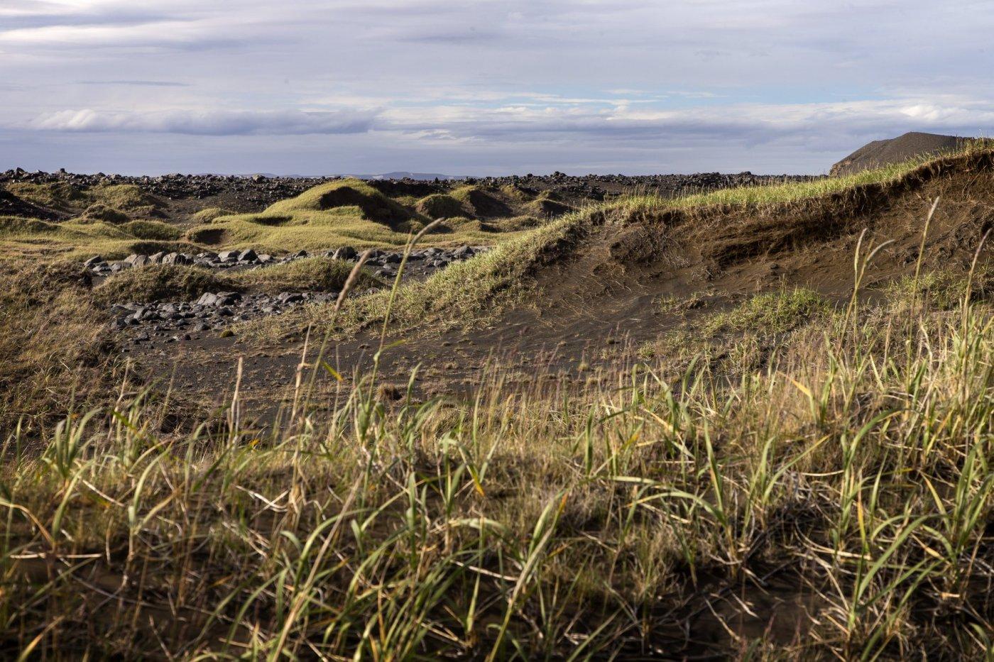 rofabörð á Norðurlandi
