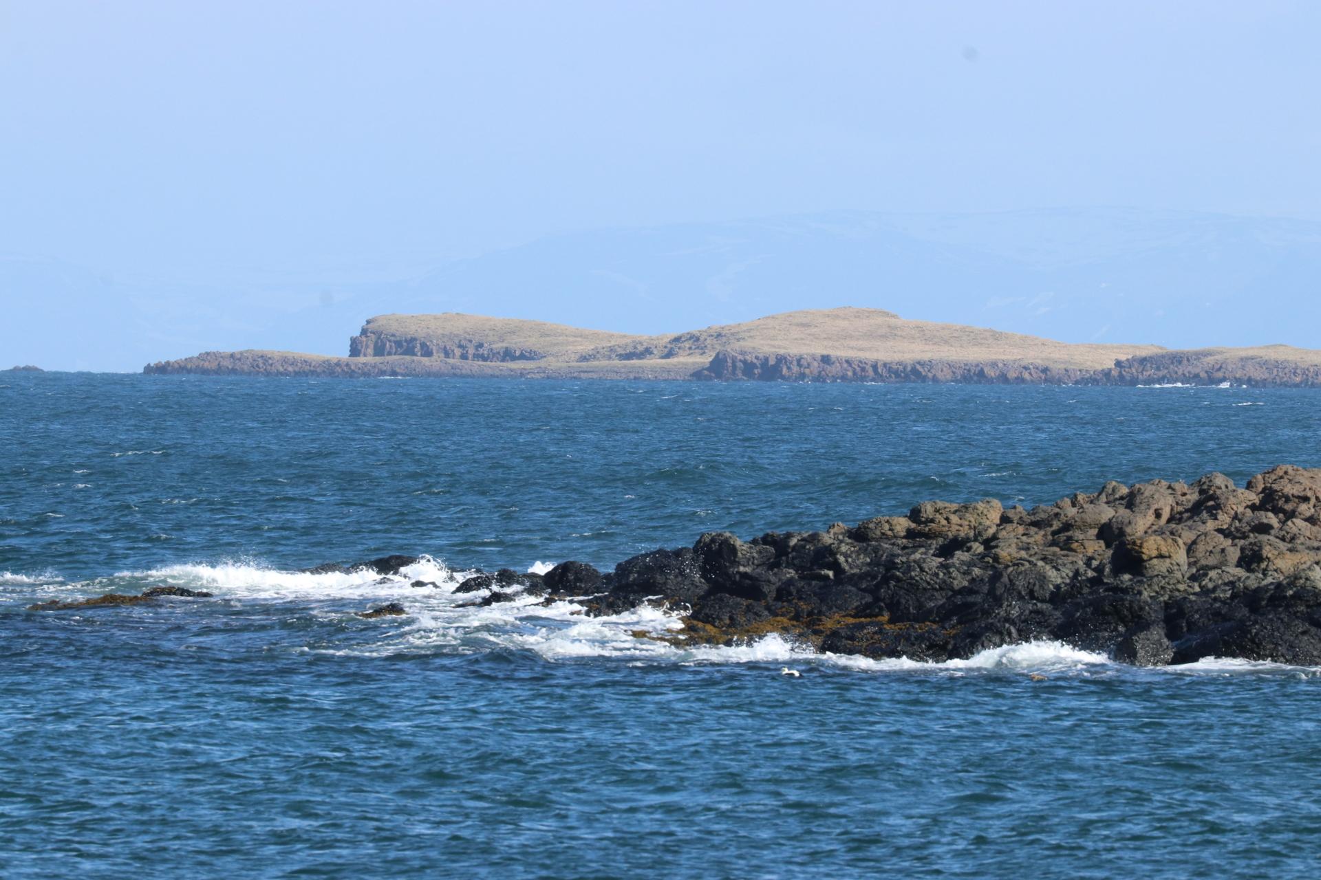 Breiðafjörður er eitt mikilvægasta varpsvæði æðarfugls á Íslandi. Eyjarnar eru varpstaðir og þangsvæðin uppeldisstöðvar fyrir ungana.