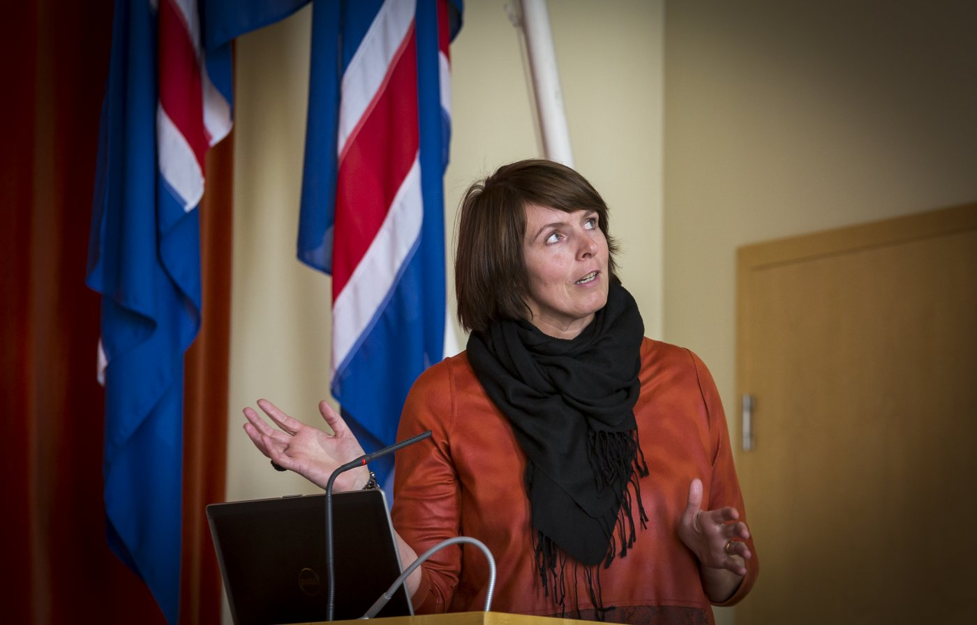 Ingibjörg Gunnarsdótti