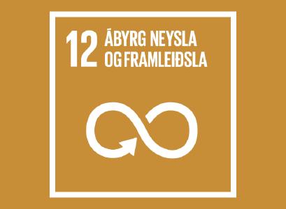 Heimsmarkmið 12-Ábyrg neysla og framleiðsla