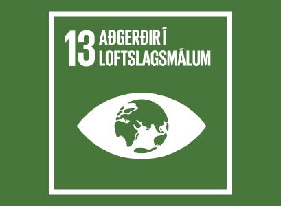 Heimsmarkmið 13- Aðgerðir í loftslagsmálum