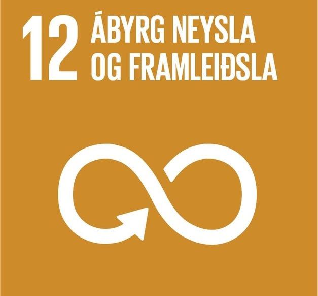 Heimsmarkmið 12 - Ábyrg neysla og framleiðsla